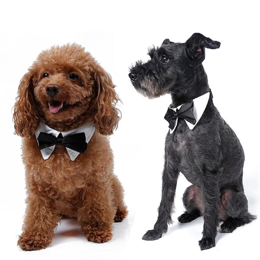 pet supplies cats dog tie wedding decoration dogs bowtie